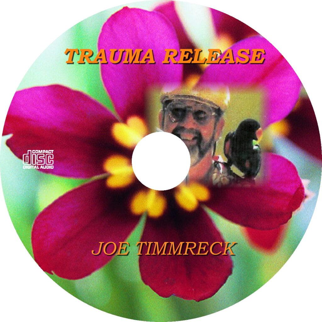 trauma release by joe timmreck